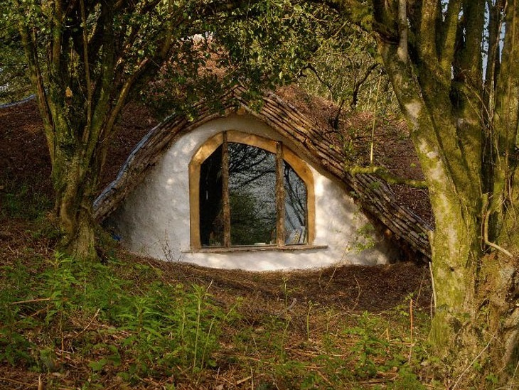 cool-Hobbit-house-woods-forest