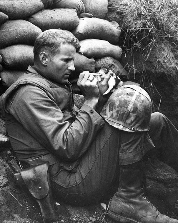 Soldier in Korea saves a kitten.