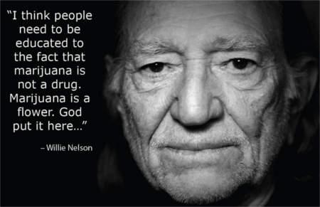 inspiring marijuana quotes