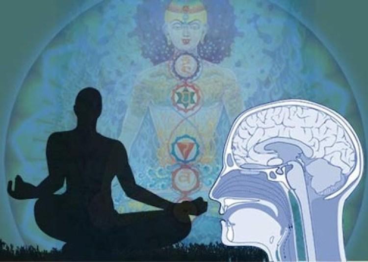 meditation_brain