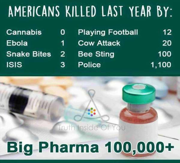 Americans killed in 2015 by