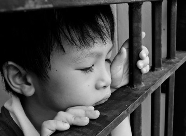 Children and youth who witness family violence experience