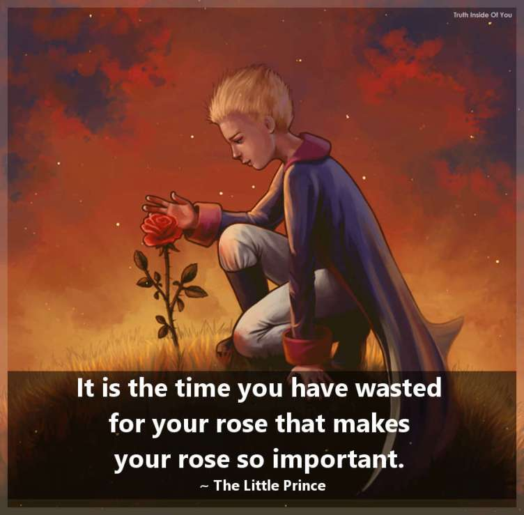 It is the time you have wasted for your rose that makes your rose so important. ~ The Little Prince