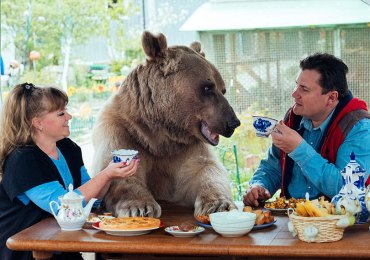 Stepan adopted bear