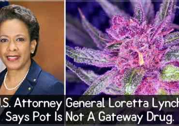 U.S. Attorney General Loretta Lynch Says Pot Is Not A Gateway Drug.