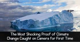 The Most Shocking Proof of Climate Change Caught on Camera for First Time