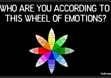 WHO ARE YOU ACCORDING TO THIS WHEEL OF EMOTIONS?