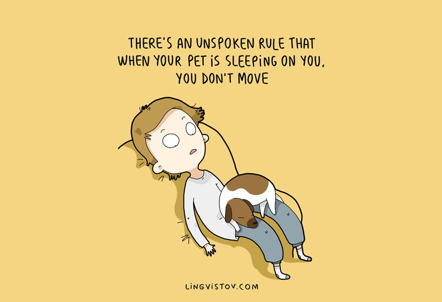 There's an unspoken rule that when your pet is sleeping on you, you don't move.