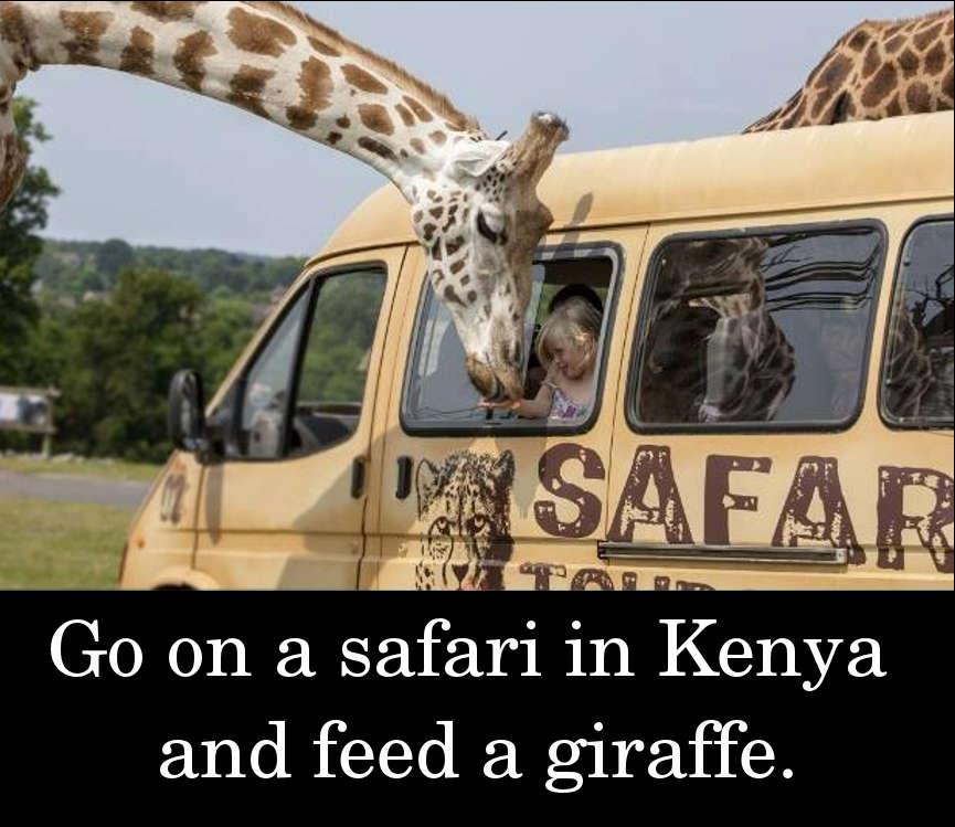 Go on a safari in Kenya and feed a giraffe.