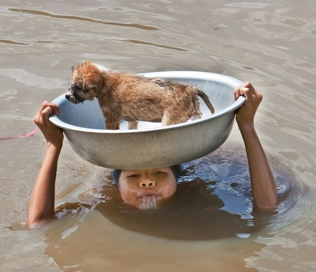 15. This girl saves a puppy from drowning.