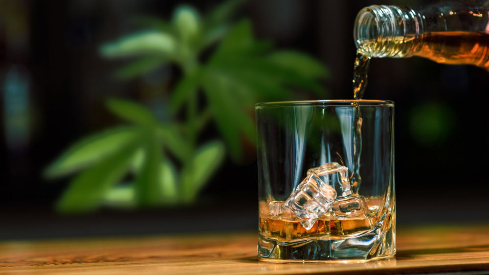 2. Minimizes the risk of liver disease among alcohol users