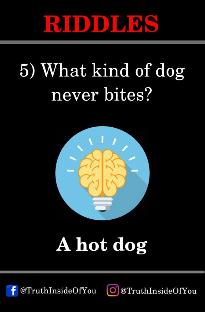 5. What kind of dog never bites