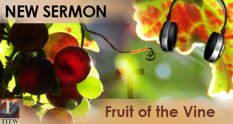 Sermon Fruit of the Vine