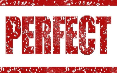 Can Anyone Be Perfect?