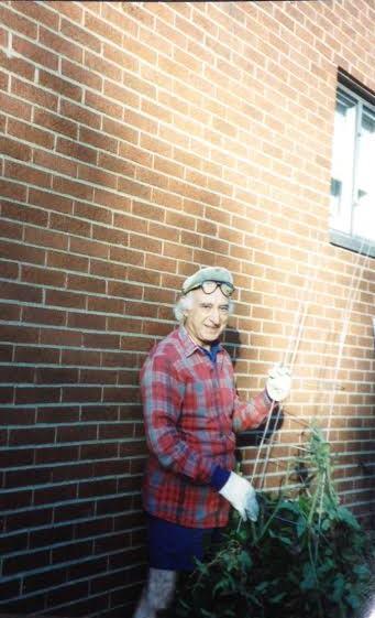 Pap gardening in his backyard