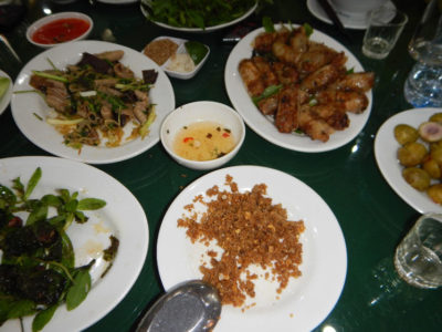 Exotic and unforgettable snake meal in the Snake Village Hanoi, Vietnam