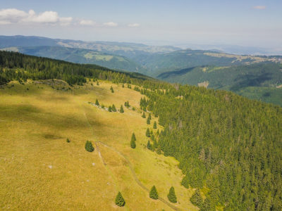Hiking in the Cindrel mountains, in the Sibiu district, Romania