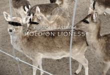 Kristofer Åström – Hold On Lioness