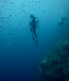 Honduras West Bay Divers 2