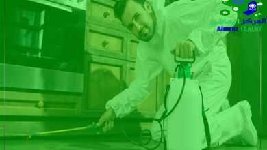 طريقة التخلص من حشرات المطبخ, طريقة التخلص من حشرات المطبخ, شركة المركز العالمي