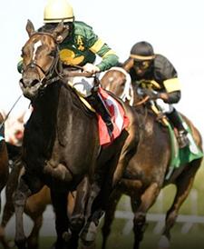 Woodbine Entertainment racing action