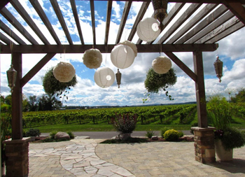 The view from the terrace of Holland Marsh Wineries