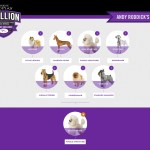 Roddick Westminster Dog Show Bracket
