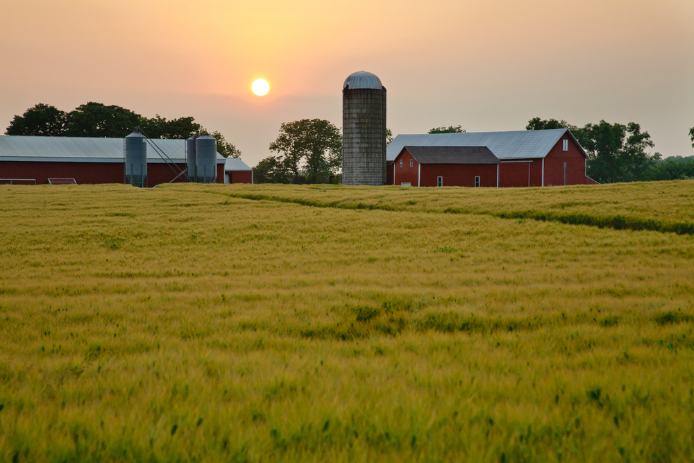 14 Long-term Grain Storage Tips for Better Market Results
