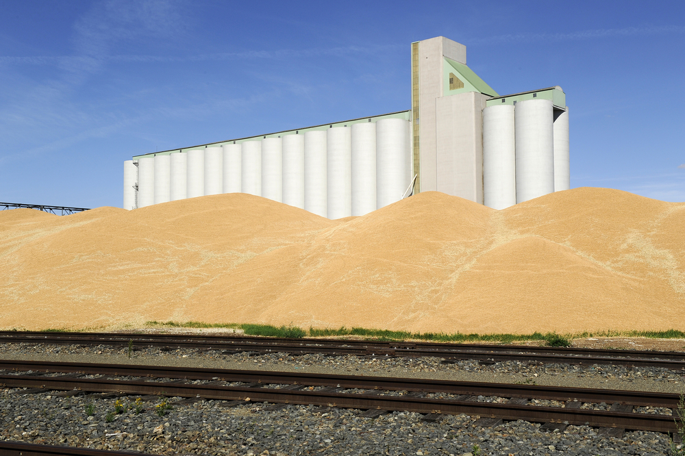 6 Reasons Planning for a Grain Storage Shortage Might Be the Right Move