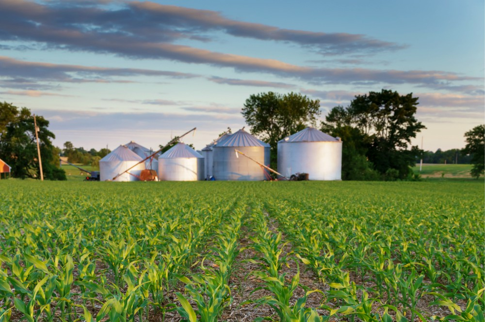 4 Reasons to Increase Your On-Farm Corn Storage