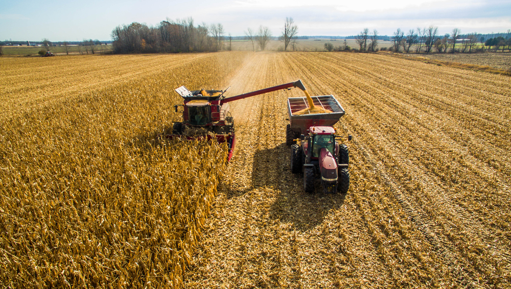 Will US Farmers See a Frost-Free Harvest Season?
