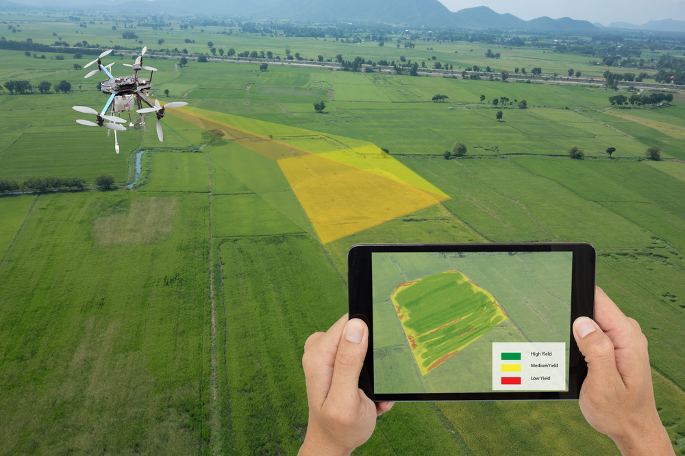 Why Farmers Use Drones in Agriculture (and Maybe You Should Too)