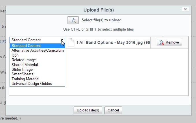 Alfresco Share Custom Upload Diablog