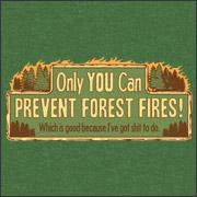 Só você pode impedir incêndios nas florestas - o que é bom porque eu tenho mais o que fazer.
