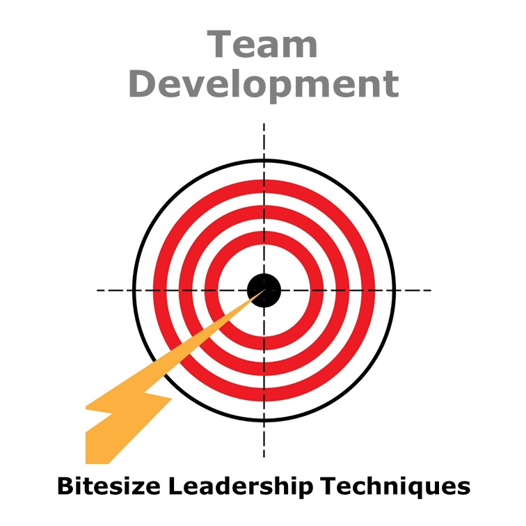 Bitesize Leadership Techniques – Team Development