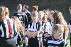 TSV-Vereinsfest-2018_2 - 8