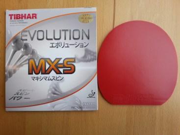 Tibhar Evolution MX-S Frontcover und Belag