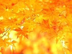 10月5日・6日に東京で第3期 「人生を劇的に変える!超実践 2daysワークショップ」開催します!!