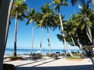 パラオに行こう! 太平洋の楽園に11年ぶりに再訪を決めたので 行く前からブログでいろいろ発信します! [パラオ]