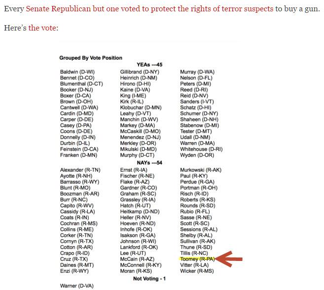 Senate Vote on Terror List and Guns