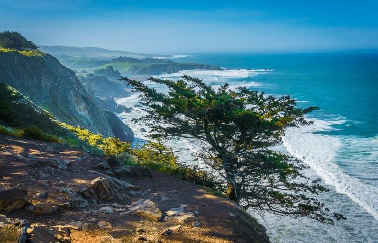 California Big Sur Morning at Ragged Point
