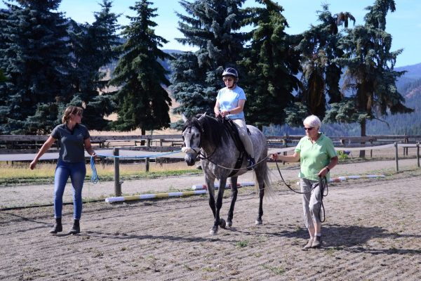 Using the Tellington TTouch Beeline leading position to boost the confidence of horse and rider