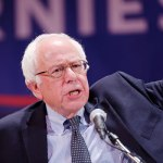 "Local Democrats: Media Not Feeling The ""Bern"""