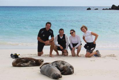 Galapagos beach seals