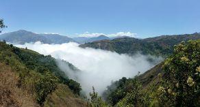 ecuador cloudforest