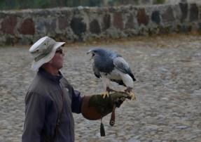 otovalo condor park