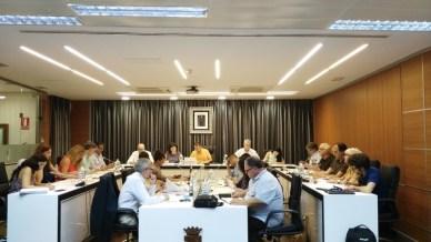 Una imagen del pleno del Ayuntamiento de Riba-roja de Túria.