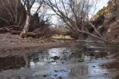 Gabe Zimmerman Davidson Canyon Trailhead-3