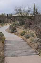 picnic area at Saguaro National Park EAST
