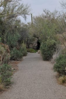 Arizona-Sonora Desert Museum has 2 miles of walking paths